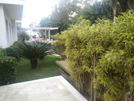 Next Barra Prime  vegetacion 15089f36a49f3