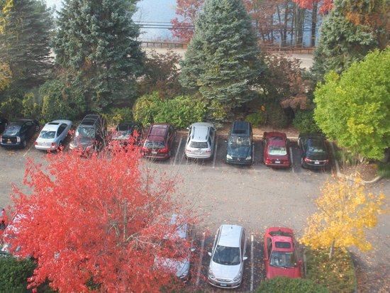 Mystic Marriott Hotel & Spa: Fall season views from the room - the front parking lot