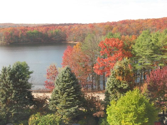 Mystic Marriott Hotel & Spa: Fall season views from the room - of the lake nearby