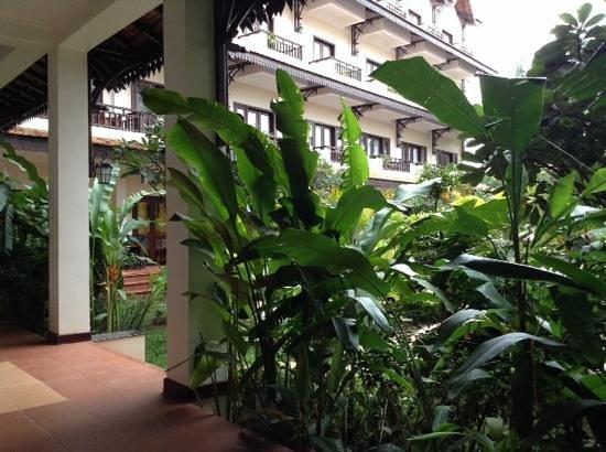 Saem Siemreap Hotel : saem hotel