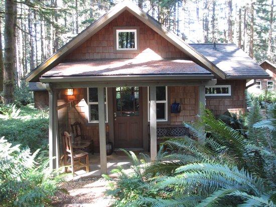WildSpring Guest Habitat: Barenton Cabin