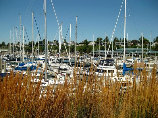 Anthony's at Squalicum Harbor: Bellwether Bay marina