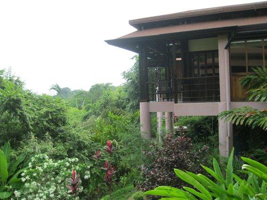 TikiVillas Rainforest Lodge: our villa