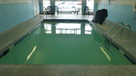 City Center Motel: Indoor Pool
