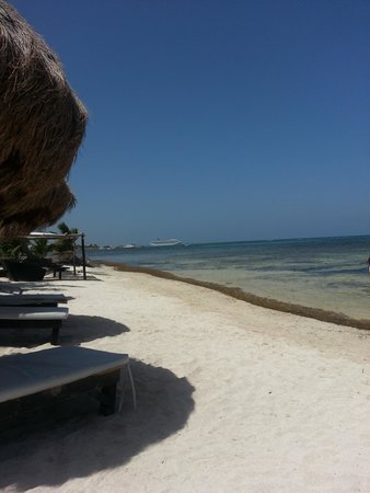 Hotel Arenas : Beach.