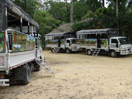 Canopy Adventure Zip Line Tours: 8