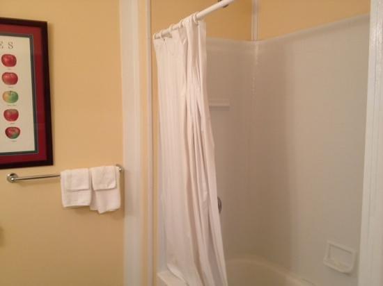 Honor Motel: bath