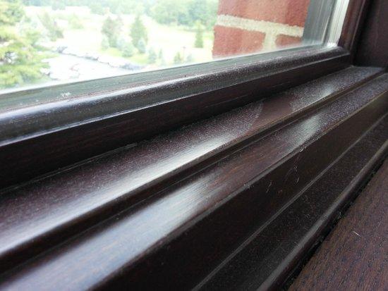 Inn at St. John's : Dusty windowsill...