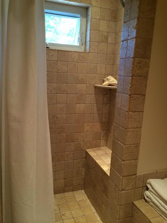 The Cottage Inn & Spa: Shower (double head)