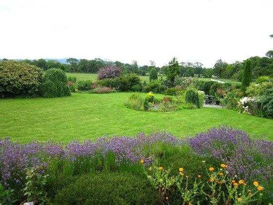 Willowbrook Bed & Breakfast: Back garden