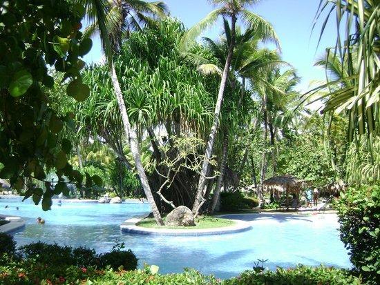 Paradisus Punta Cana: pool area