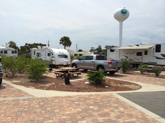 Destin West RV Resort : Pool