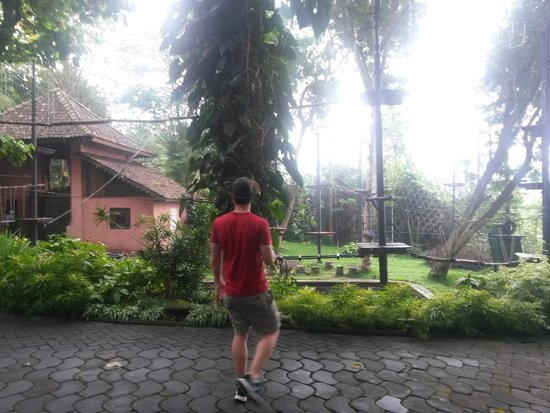 Kaliandra Eco Resort & Farm : Ropes course on the grounds