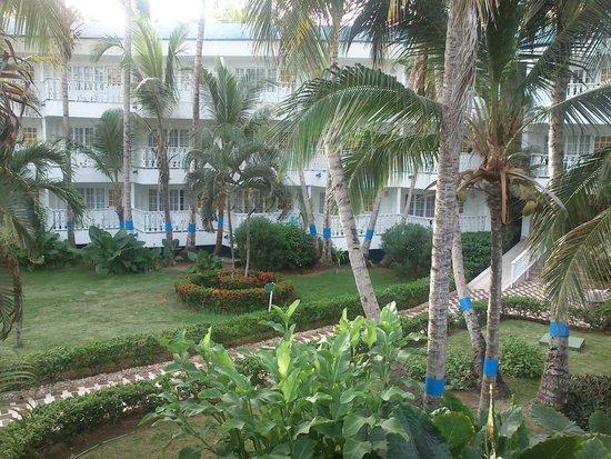 Decameron Marazul: Jardim do hotel