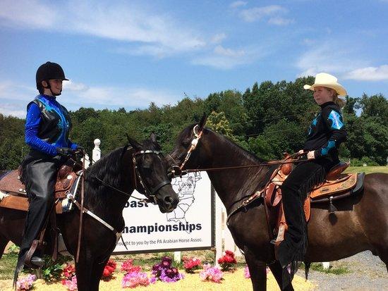 Virginia Horse Center: Western dressage