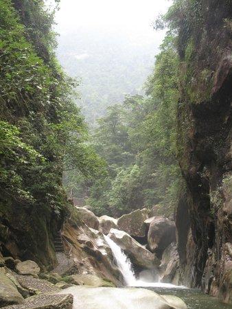 Guangxi Maoer Mountain Reserve : 瀑布