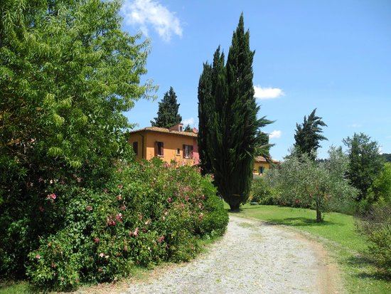 Cooking Vacations Italy: Podere