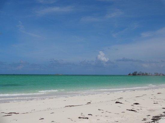 Andros Beach Club: Our own private beach. Beautiful!