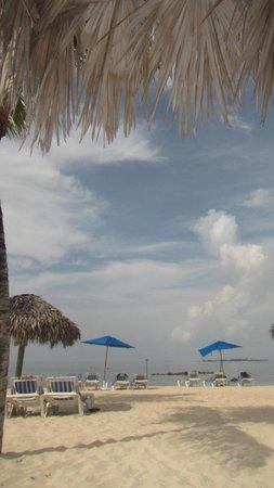 Melia Nassau Beach - All Inclusive: The beach