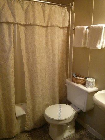 Pines Motel : Clean Bathroom