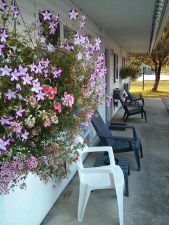 Pines Motel : A Good Sign - Hanging Flowers