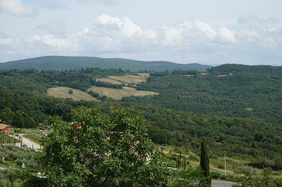 Azienda Agraria Il Castagno : View from the apartment pool