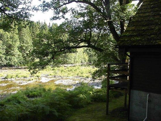 Burnbank Lodges: View