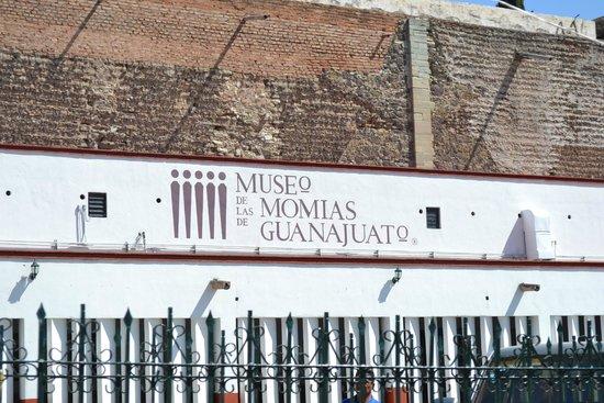 Museo de las Momias de Guanajuato : Entrada
