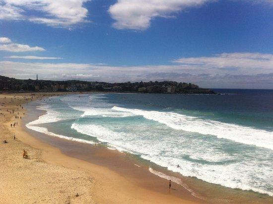 Ein Traum: Bondi Beach