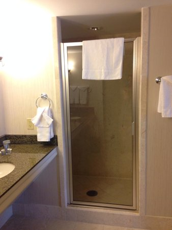 Sugar Land Marriott Town Square: 9th floor suite shower