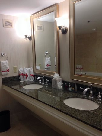 Sugar Land Marriott Town Square: Presidential suite master bath