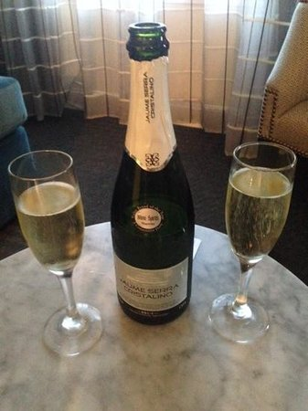 The Lancaster Hotel: Champaigne with the Anniversary Package