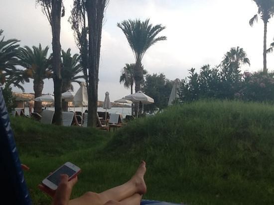Ascos Coral Beach Hotel: vue de notre terrasse