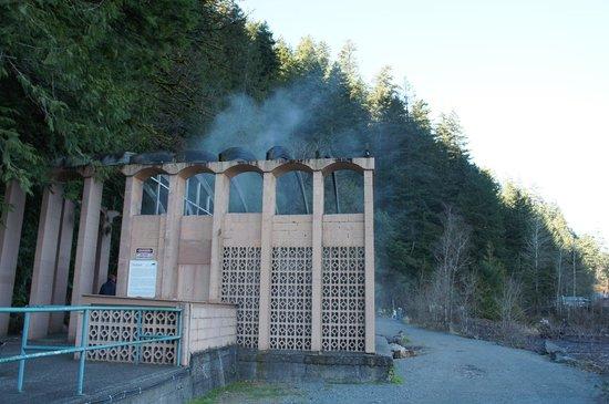Harrison Hot Springs Resort & Spa: 温泉が湧き出てる場所