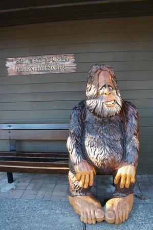 Harrison Hot Springs Resort & Spa: 町を探索中!昼食を食べた隣のお店にある猿?