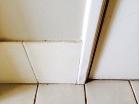 Mont Clare Boutique Apartments : bathroom floor through to bedroom