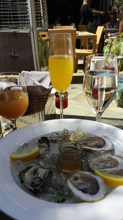 Lucy Restaurant and Bar: Delicious oysters at Lucy.