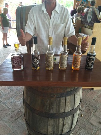 Hotel Riu Vallarta : Tequila tour family owned business