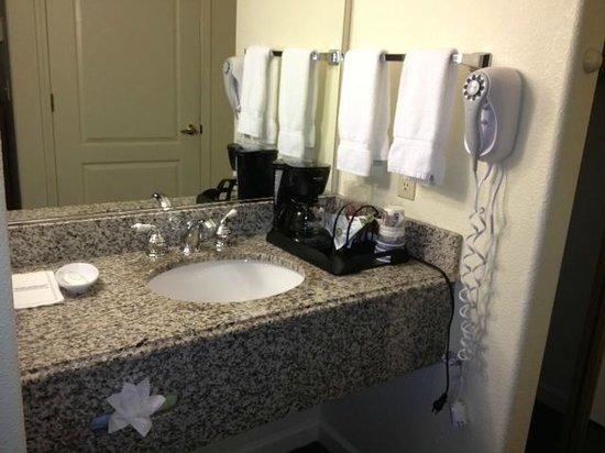 Best Western Plus Cedar Inn & Suites: Nice vanity/sink area