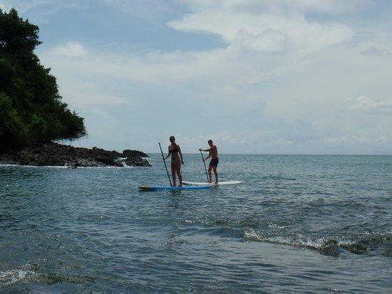 Copa de Arbol Beach and Rainforest Resort: Paddle Boarding