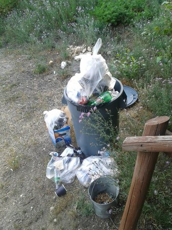 The Lodge at Lolo Hot Springs : Trash at our front entrance!