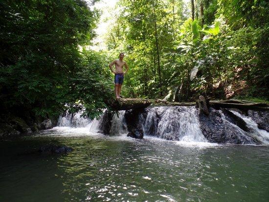 Copa de Arbol Beach and Rainforest Resort: Corcovado National Park