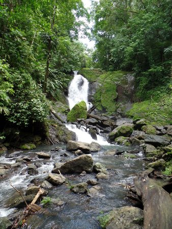 Copa de Arbol Beach and Rainforest Resort: Corocovado Waterfall