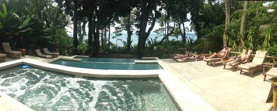 Copa de Arbol Beach and Rainforest Resort: Infinity Pool