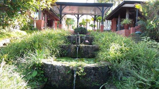 Mom Tri's Villa Royale: greeneries.....