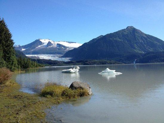 Mendenhall Glacier Visitor Center: Glacier