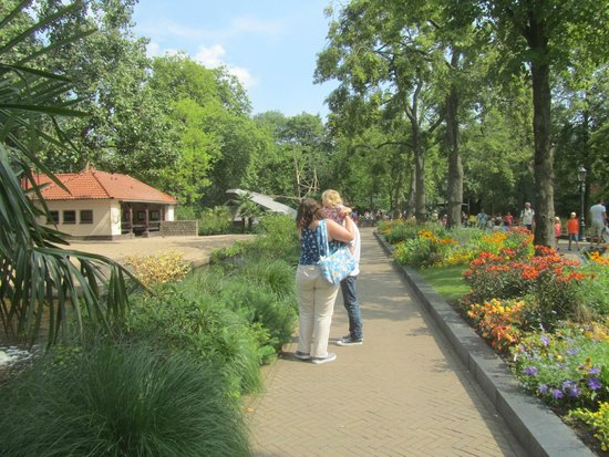 Artis Zoo : At the start of a mini adventure