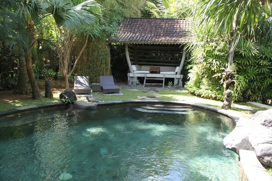 Dea Villas : Private swimming pool