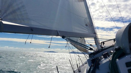 S.V. Domino : Sailing aboard S.V.Domino