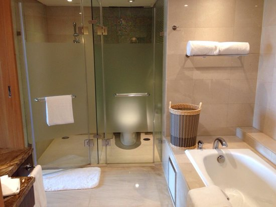 Park Plaza Wangfujing: The luxury bathroom